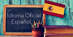 Idioma castellano